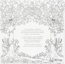 Amazon Enchanted Forest An Inky Quest Coloring Book 6063887956574