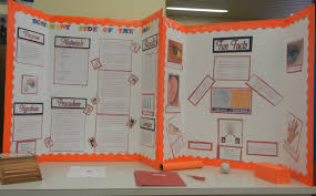 Ap High School Science Fair Projects Biology Mountain Barrow Jana