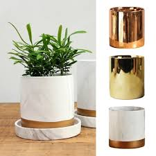 Qoo10 gold plant pot Furniture Deco