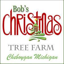 Broadview Christmas Tree Farm Wedding by 2018 Michigan U0027s Best Christmas Tree Farms Michigan Life