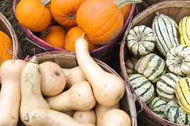 Preserve A Carved Pumpkin And Prevent Mold by How To Preserve Pumpkin And Other Winter Squashes