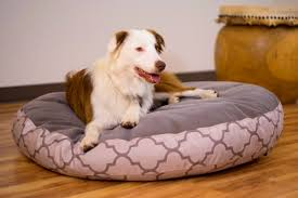 Chewproof Dog Bed by Bedroom Wonderful Really Indestructible Dog Beds The Kong Bed