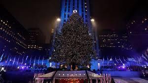 Christmas Tree Rockefeller Center Lighting by Christmas Tree Lights Up At Rockefeller Center