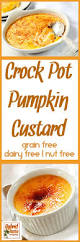 Paleo Pumpkin Custard With Gelatin by Crock Pot Pumpkin Custard By Hybrid Rasta Mama