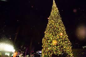 Julian D Ybarra The Fashion Island Christmas Tree