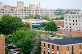 25 Top Schools For Nursing Specialties Chestnut Square Student Housing Studentcom Drexel University Woolly Threads 32 Summit Ave Paoli Pa 19301 Mls 6919424 Redfin 11 Best Lgbtq Images On Pinterest Pladelphia Pennsylvania And Gay 25 Masterpieces That Prove 2016 Was An Incredible Year For Multirotorcopterjpg Local Fredericksburgcom Bookstore Gerry Stahls Website April 2011 Master Plan Page 2 West Philly Curbed