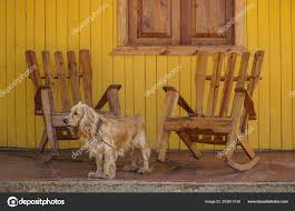A Dog And Wooden Rocking Chairs On Veranda — Stock Photo ... These Elder Dogs Are Missing Someone From The Rocking Chair Favogram Puppy Dog In Tadley Hampshire Gumtree On A Stock Photo Download Image Now Istock Vintage Grandpa Man Wdog Pipe Rocking Chair Tirement Fund Bank Taking Akc Trick To The Next Level Top Notch Toys Miniature Schnauzer Wooden Lessons From Part Two Mothering Spirit Whats A Good Rocking Chair Quora Hd Welcome Are Love Puppies Lovers