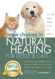 Pumpkin Rice For Dog Diarrhea by Puppy Diarrhea Home Remedies For Dog Diarrhea U0026 When To Call Vet