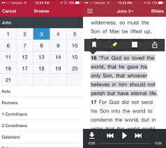 5 Best Bible Apps for iPhone iPad Android and Kindle Fire
