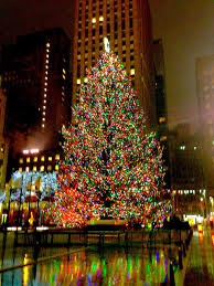 Stew Leonards Christmas Tree Hours by Inside The Actors Studio Apartment December 2012