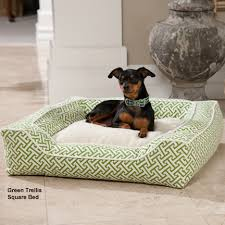 dfs designer pet collection square bed dog beds at drsfostersmith com
