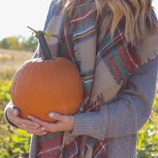Apple Pumpkin Picking Syracuse Ny by About Emily Gannon