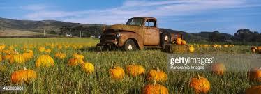 Pumpkin Patch Half Moon Bay Ca by Old Rusty Truck In Pumpkin Patch Half Moon Bay California Usa