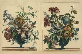 100 Flannel Flower Glass Arrangements In Glass Vases Dumbarton Oaks