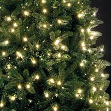 4ft Green Pre Lit Christmas Tree by Christmas Trees 6ft Christmas Lights Decoration