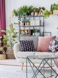 gesunde luft im wohnzimmer pflanzenfreunde