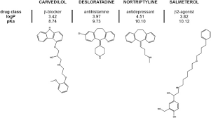 Repurposing cationic amphiphilic s as adjuvants to induce