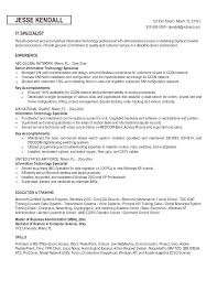 Information Technology Resume Sample Specialist Format Curriculum Vitae Samples