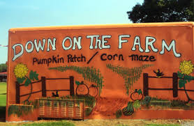 Pumpkin Patches In Birmingham Al Area by The 8 Best Corn Mazes In Alabama 2016