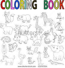 Wild Animal Coloring Book