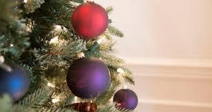 O Christmas Tree How The Evergreen Became Part Of Season