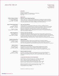 Art Director Resume Sample Finance Examples New Cv Executive