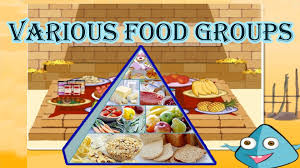 different types of cuisines in the food pyramid the 5 different food groups learn the healthy