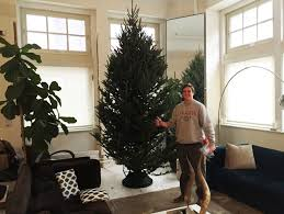 6ft Slim Christmas Tree With Lights by Christmas Modern Xmas Trees 12 Ft Pencil Slim Christmas Tree 4