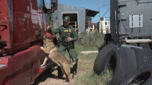 100 Red Dog Trucking Feds Expose Dangerous Driverswap Practices Of Some Local Trucking