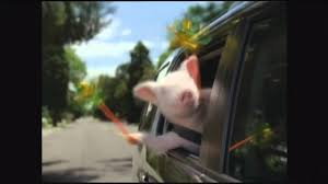 GEICO Commercial - Did The Little Piggy Cry Wee Wee Wee All The Way ...