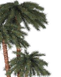 Pre Lit Christmas Tree Replacement Bulbs by Catalina Breeze Palm Trees Treetopia