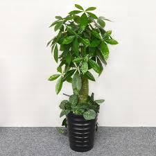 baum des falsche baum falsche blumen baum falsche blumen wohnzimmer zimmer dekorative kunststoff baum grüne pflanze boden topfpflanze innen große