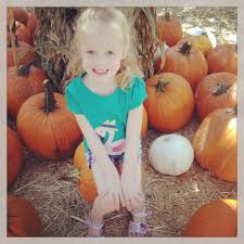 Live Oak Pumpkin Patch 2017 by The Ultimate Guide To Pumpkin Patches In Southern California