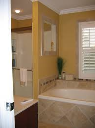 100 Bathrooms With Corner Tubs Combo Shower Designs Small Ideas Bench Bathtub Surrounds