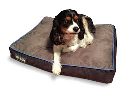 nice top 10 best orthopedic dog bed reviews models worth buying