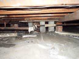 Asbestos Popcorn Ceiling Removal Seattle by Seattle Home Inspector U0027s Blog Asbestos Gone Wild