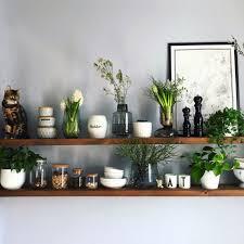 die schönsten pflanzen deko ideen seite 33