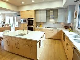 Island Sink Cool Modern Kitchen With Ideas