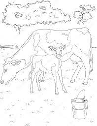 Coloriage Vache Et Veau Image Vectorielle Matreshka © 11783133