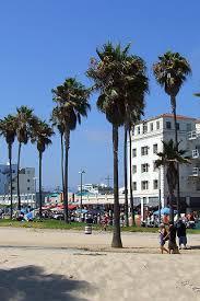 Venice Beach Mobile Wallpaper