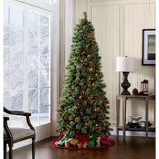 Sears Artificial Christmas Tree Stand by Color Switch Plus 7 U0027 Pre Lit Slim Regal Fir Christmas Tree