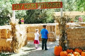 Pumpkin Patch Pasadena by Funky Polkadot Giraffe Giveaway 2015 Irvine Railroad Pumpkin Patch