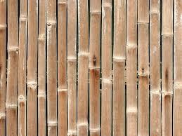 100 Bamboo Walls Wallpaper For WallpaperSafari