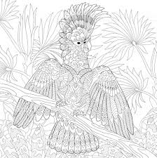 Pour Zentangle Perroquet Coloriage Adulte Coloriages Pour