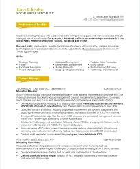 Demo Resume Format It Director Samples Cv
