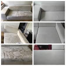 sofa und teppich reinigung wiener neustadt home