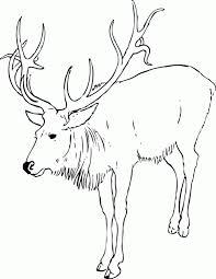 Reindeer Outline Clip Art