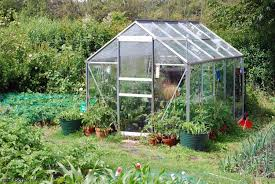 Awesome Greenhouse Design For Catchy Extra Spot In A Backyard Idea ... Backyard Greenhouse Ideas Greenhouse Ideas Decoration Home The Traditional Incporated With Pergola Hammock Plans How To Build A Diy Hobby Detailed Large Backyard Looks Great With White Glass Idea For Best 25 On Pinterest Small Garden 23 Wonderful Best Kits Garden Shed Inhabitat Green Design Innovation Architecture Unbelievable 50 Grow Weed Easy Backyards Appealing Greenhouses Amys 94 1500 Leanto Series 515 Width Sunglo