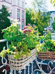 Balcony Flowers Via Umlatumblr