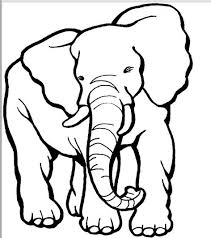 Printable Coloring Page Elephant 9 Mammals